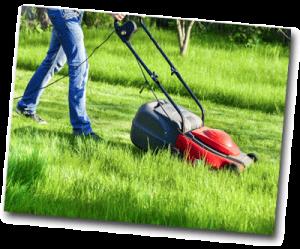 Homme qui tond la pelouse en journée sous le soleil