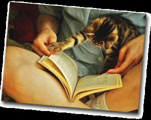 Femme qui lit un livre en soirée avec un chat sur les jambes