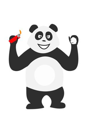 Panda qui fait des bêtises