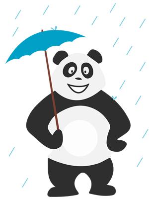 Panda sous la pluie