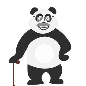 Panda senior